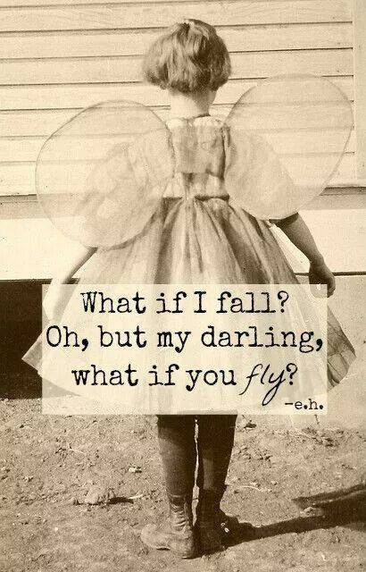 Blog what if fail or fly